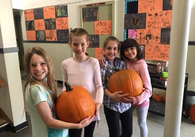 Halloween pumpkins at Macaulay.